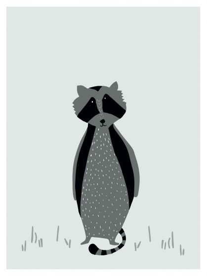 Poster - Mr. Raccoon